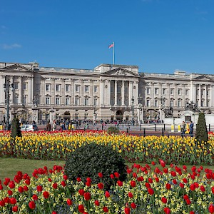 The eastern façade of Buckingham Palace and the Victoria Memorial (Photo by Diliff)