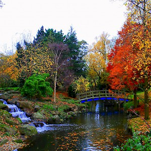 Regent's Park in the autumn (Photo by val savarese)