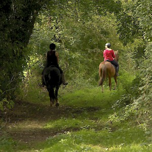 Riding along a bridle path in Cheshire, England (Photo by Terry Kearney)