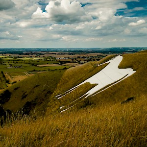 The Westbury White Horse (Photo by Sam Walpole)